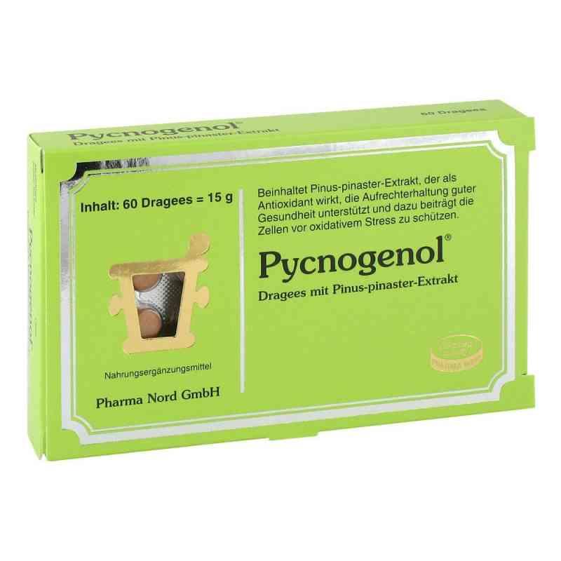 Pycnogenol Kiefernrindenextrakt Dragees  bei apolux.de bestellen