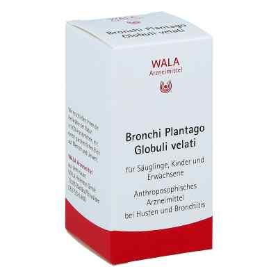 Bronchi Plantago Globuli velati  bei apolux.de bestellen
