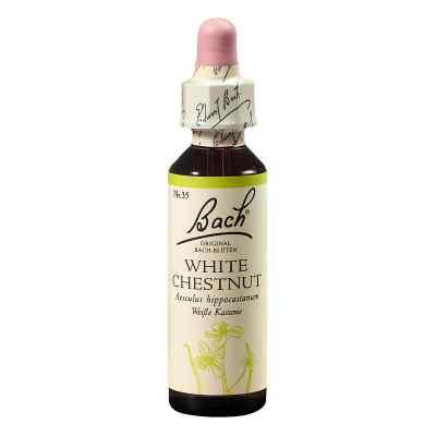 Bachblüten White Chestnut Tropfen  bei apolux.de bestellen
