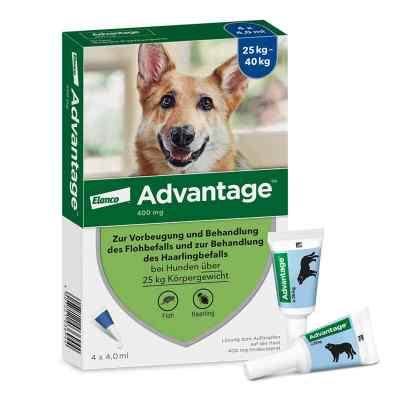 Advantage 400 für Hunde Lösung  bei apolux.de bestellen