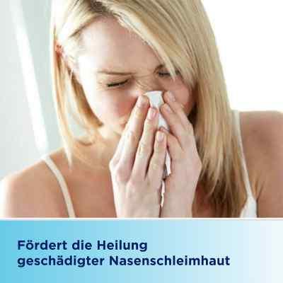 Bepanthen Augen- und Nasensalbe  bei apolux.de bestellen