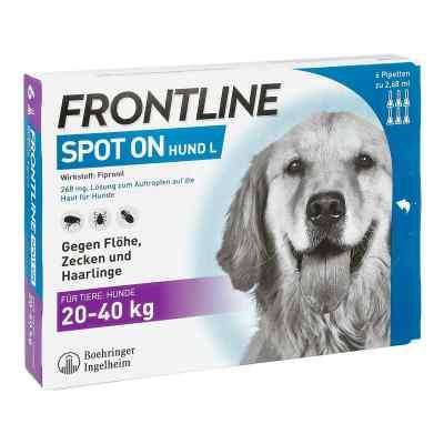 Frontline Spot on Hund 40 veterinär Lösung gegen Flöhe und Zecke  bei apolux.de bestellen