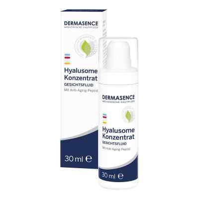 Dermasence Hyalusome Konz. Emulsion  bei apolux.de bestellen