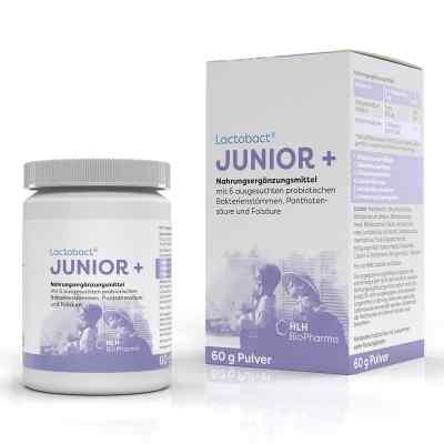 Lactobact Junior Pulver  bei apolux.de bestellen