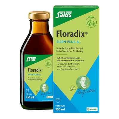 Floradix Eisen plus B12 vegan Tonikum