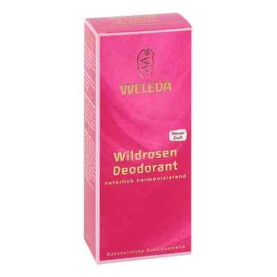 Weleda Wildrosen Deodorant  bei apolux.de bestellen