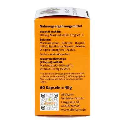 Mariendistel öl 500 mg Kapseln  bei apolux.de bestellen