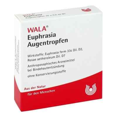 Euphrasia Augentropfen  bei apolux.de bestellen