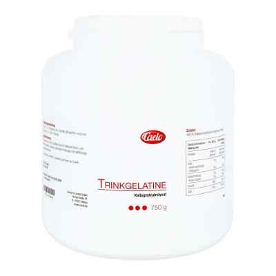 Caelo Trinkgelatine  bei apolux.de bestellen