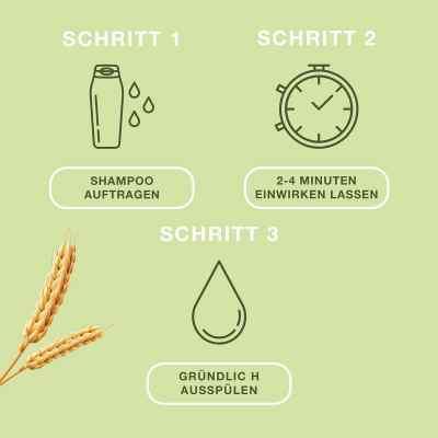 Priorin Shampoo - ergänzende Pflege für kraftloses Haar  bei apolux.de bestellen