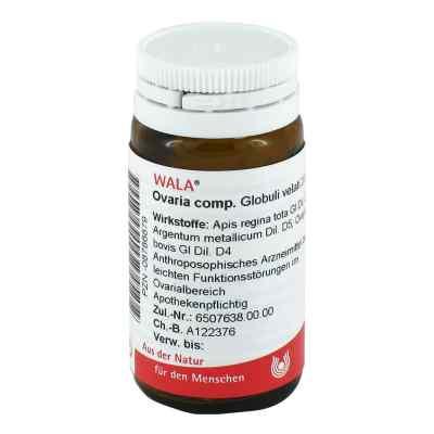Ovaria Comp. Globuli  bei apolux.de bestellen
