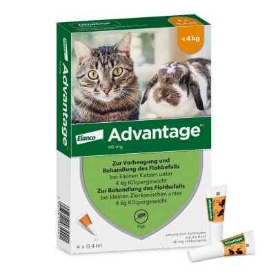 Advantage 40 mg für kl.Katzen und kl.Zierkaninchen  bei apolux.de bestellen