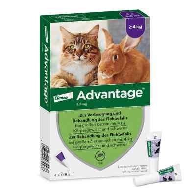 Advantage 80 mg für gr.Katzen und gr.Zierkaninchen  bei apolux.de bestellen