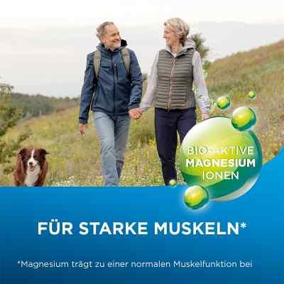 Biolectra Magnesium 300 mg Liquid  bei apolux.de bestellen