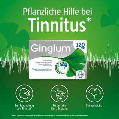 Gingium 120 mg Filmtabletten  bei apolux.de bestellen