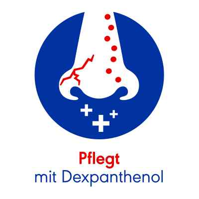 Otriven Protect 1 mg/ml + 50 mg/ml Nasenspray Lösung  bei apolux.de bestellen